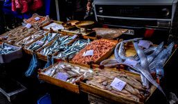 fish-food-market-96379